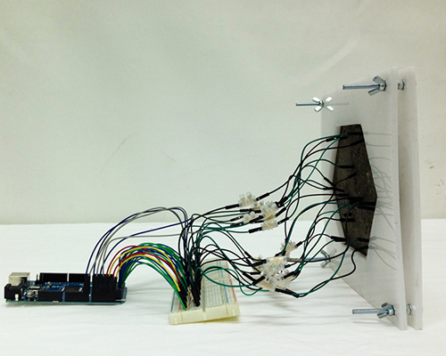 伊克露娜(Iker Luna)在生物陶瓷系统中做苔藓实验