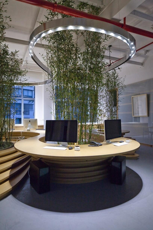 物竹子办公室内景