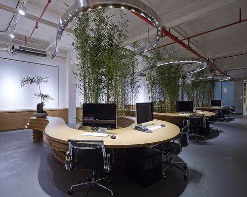 上海JW(联合)公司植物竹子办公室内景