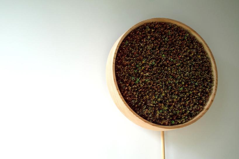 bril-coniferous-clock-sugidama-sake-designboom-02