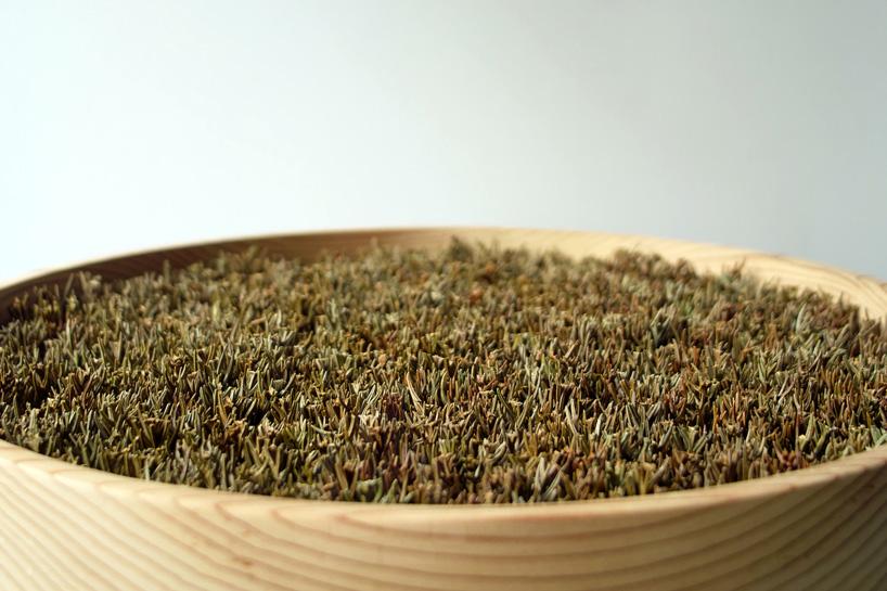 bril-coniferous-clock-sugidama-sake-designboom-05
