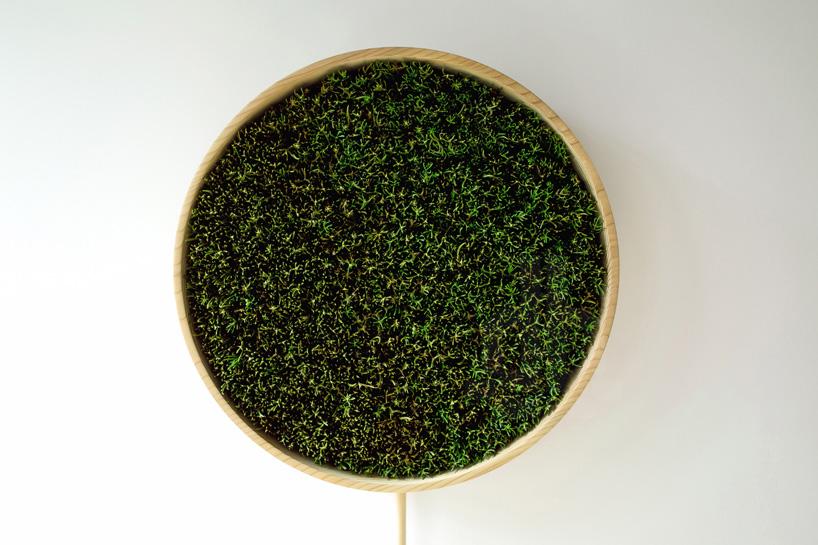 bril-coniferous-clock-sugidama-sake-designboom-06