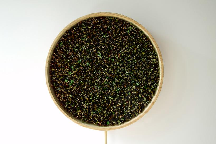 bril-coniferous-clock-sugidama-sake-designboom-07