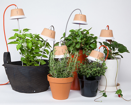 "bulbo 为促进室内植物成长而发明的 ""cynara and quadra""LED灯"