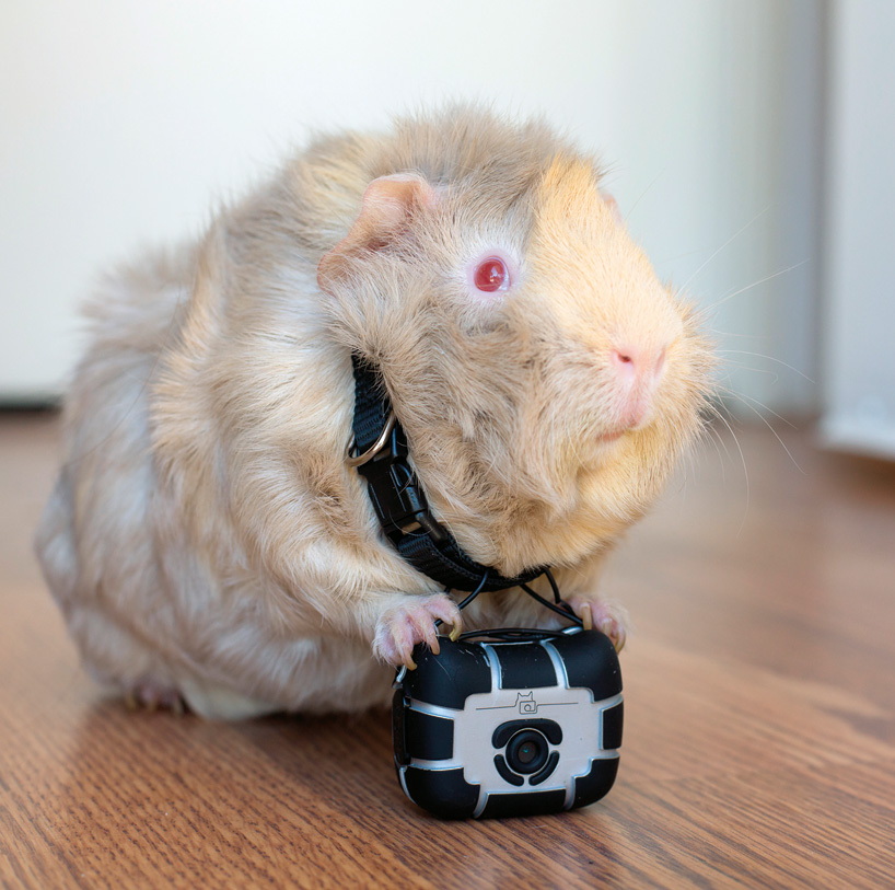 petcam-world-lens-four-legged-designboom-08