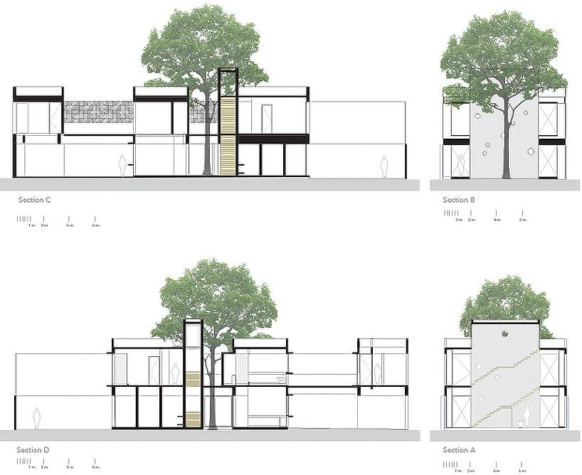 建筑手绘树单体
