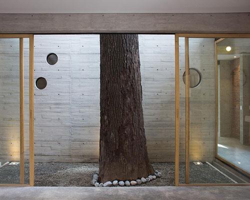 Ludens在圣卡塔琳娜州打造围绕着两颗灰树的 火山石 立面住宅