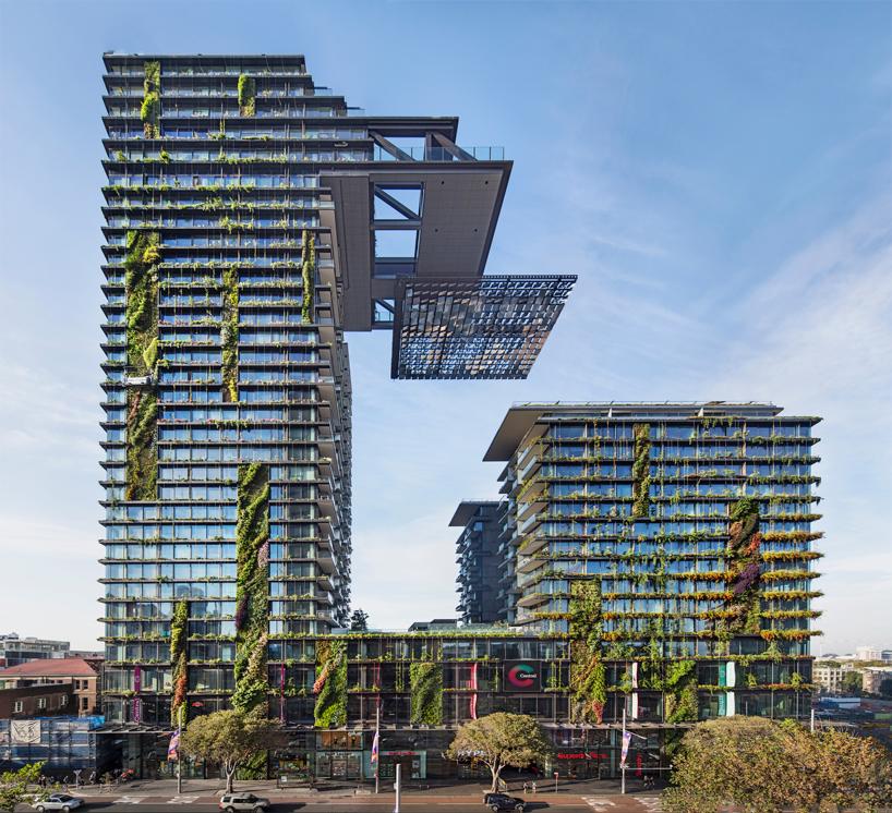 top house-designboom (4)