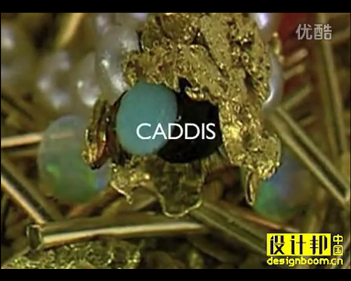 Caddis Fly used in Jewellery - Modern Art