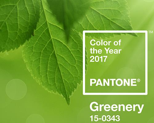 Pantone公布2017年度代表色 PANTONE 15-0343 Greenery草木绿