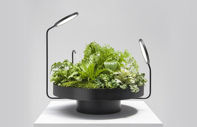 goula figuera打造viride系列 植物与灯光完美结合