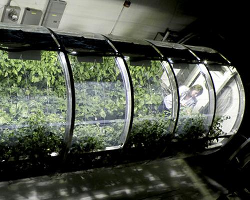 NASA推出充气温室 真的可以在火星上种土豆了