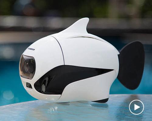 Robosea推出仿生机器鱼BIKI