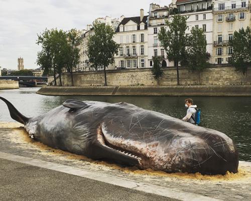 一头巨大的抹香鲸搁浅在塞纳河畔