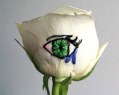 sophie king在玫瑰花上刺绣