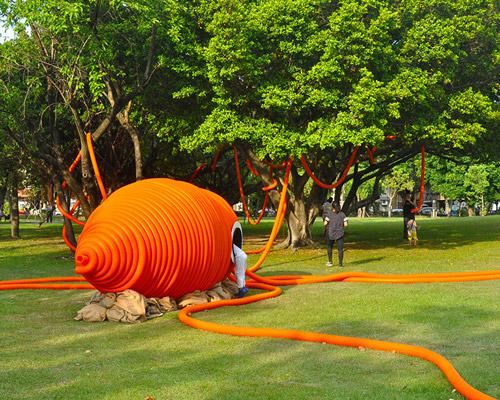 橙色大章鱼现身台北美仑公园