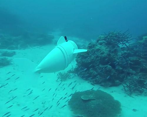麻省理工学院研发软体机器鱼可拍摄海洋生物