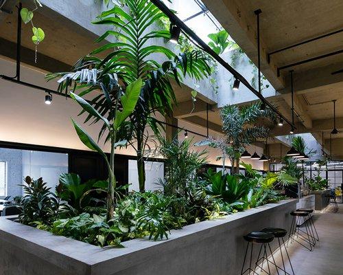 group8打造丛林驿站 用绿色连接协同办公空间