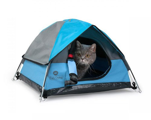 猫咪专用迷你帐篷 带上主子去探险