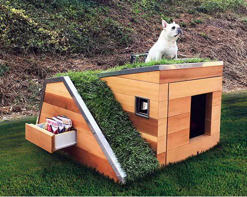 绿色屋顶超现代梦之狗屋