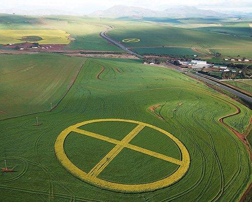 strijdom van der merwe在南非制造了麦田怪圈