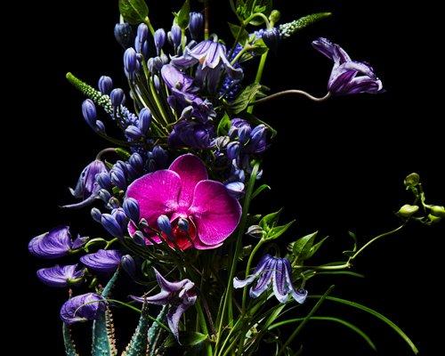 azuma makoto用花卉雕塑诠释美丽来源于质朴