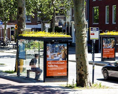 300个公交站变身蜜蜂绿色避难所
