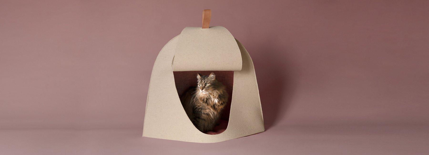 超舒适宠物窝与糖果色宠物餐具