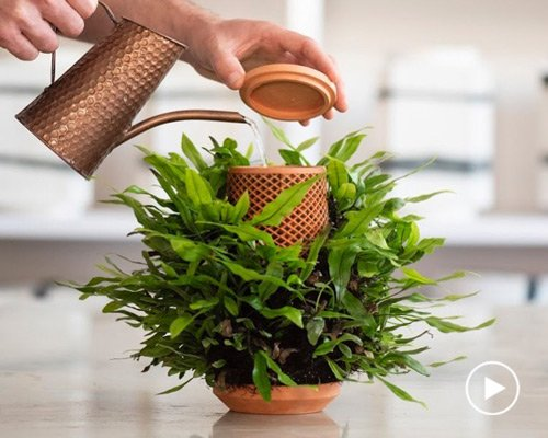陶瓷水培花盆 室内种植新选择