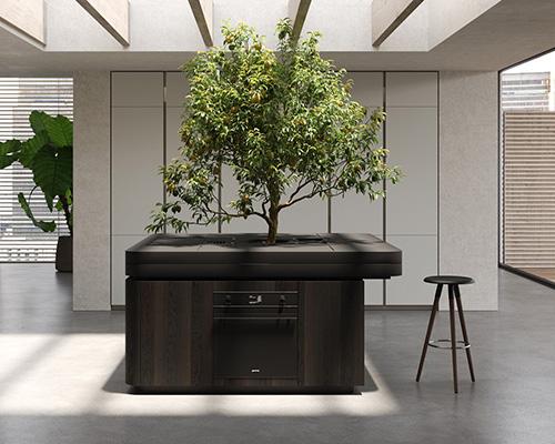 可以种树的厨房中岛oasi