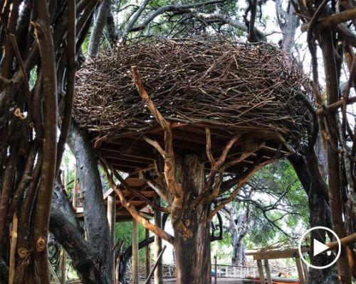 能容纳十人就餐的超大鸟巢