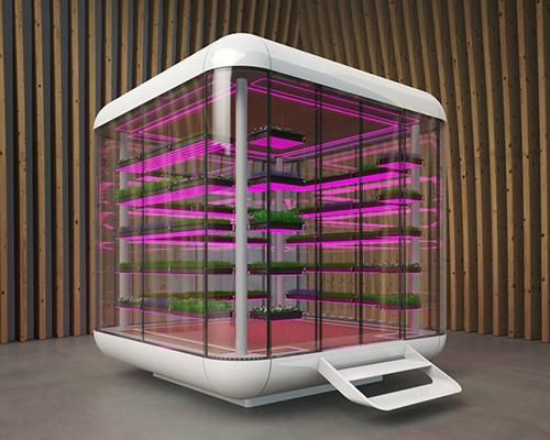 微型菜苗专用步入式气候温室